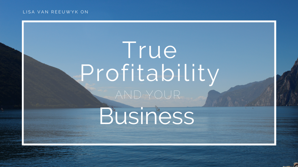 True Profitability and Your Business Blog Banner